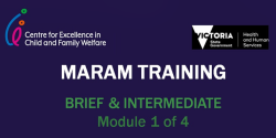 MARAM Training Brief and Intermediate - ONLINE